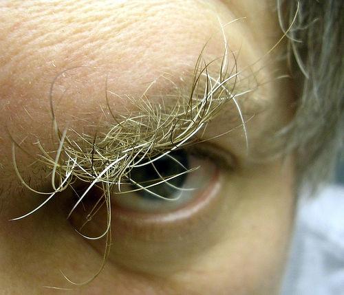 Jack lalanne eyebrows