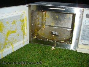 microwave_egg1_web